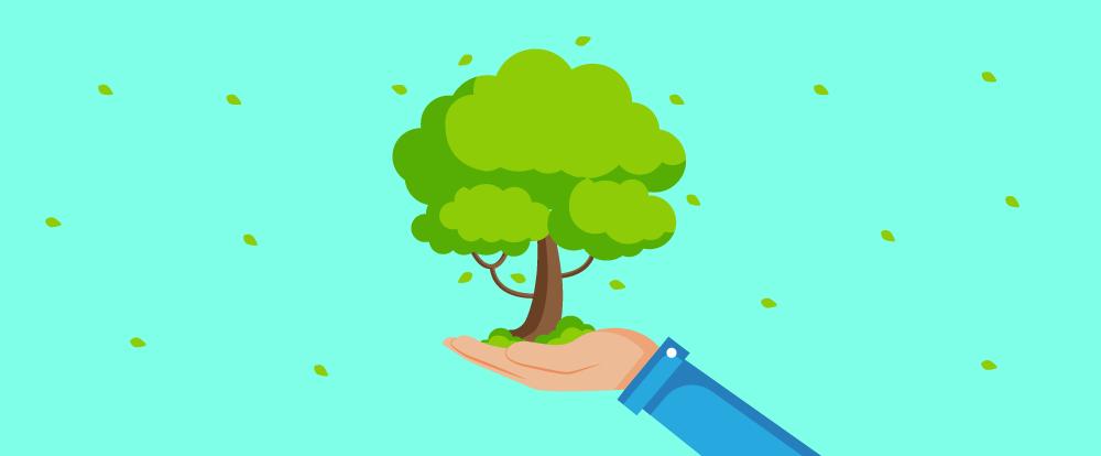 imagem de uma árvore sendo segurada por uma pessoa em suas mãos